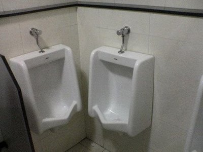 myinal and urinal