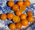 Gold Nugget Cherry Heirloom