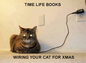 WIRING YOUR CAT