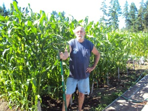 Veteran John Perrat helps weed the corn
