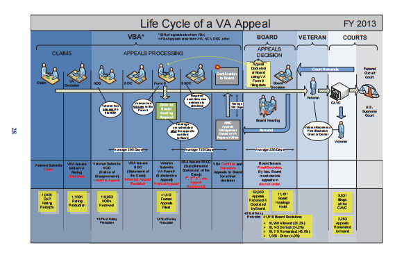 bva info graphic wide